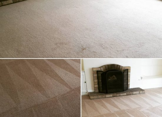 Carpet Cleaning Ely